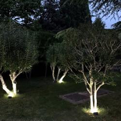 Disco Laminas Lija Circonio 178x22 mm. Grano 120